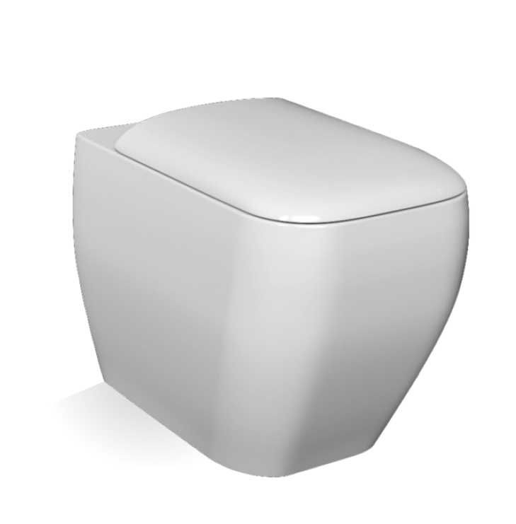 Metropolitan Back To Wall Toilet and Soft Close Seat