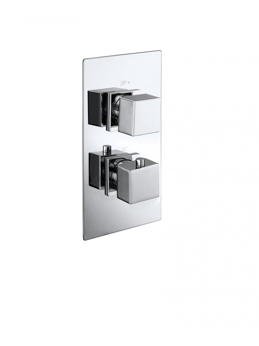 PICTOR Dual Control Shower Valve