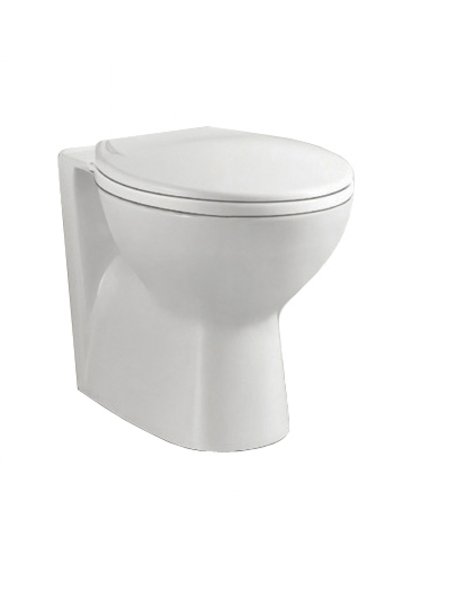 Strata Back to Wall Toilet and Soft Close Seat