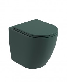 Avanti Back To Wall Rimless WC & Seat - Forest Green