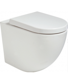 Inspire Back to Wall RIMLESS Toilet and Soft Close Seat