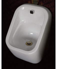S600 Urinal Bowl - Concealed Trap