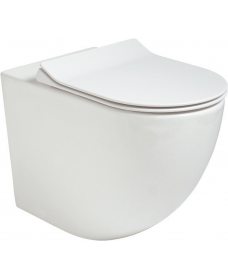 Inspire Back to Wall RIMLESS Toilet and Slim Soft Close Seat